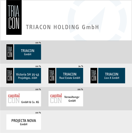 Corporate structure TRIACON: PDF